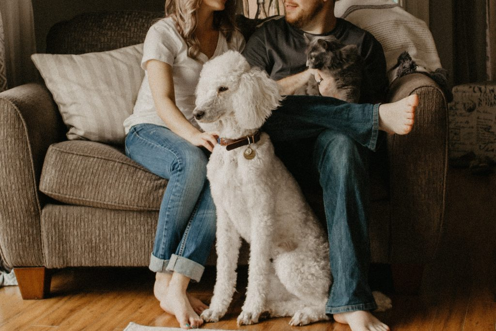 dog with family after graduation