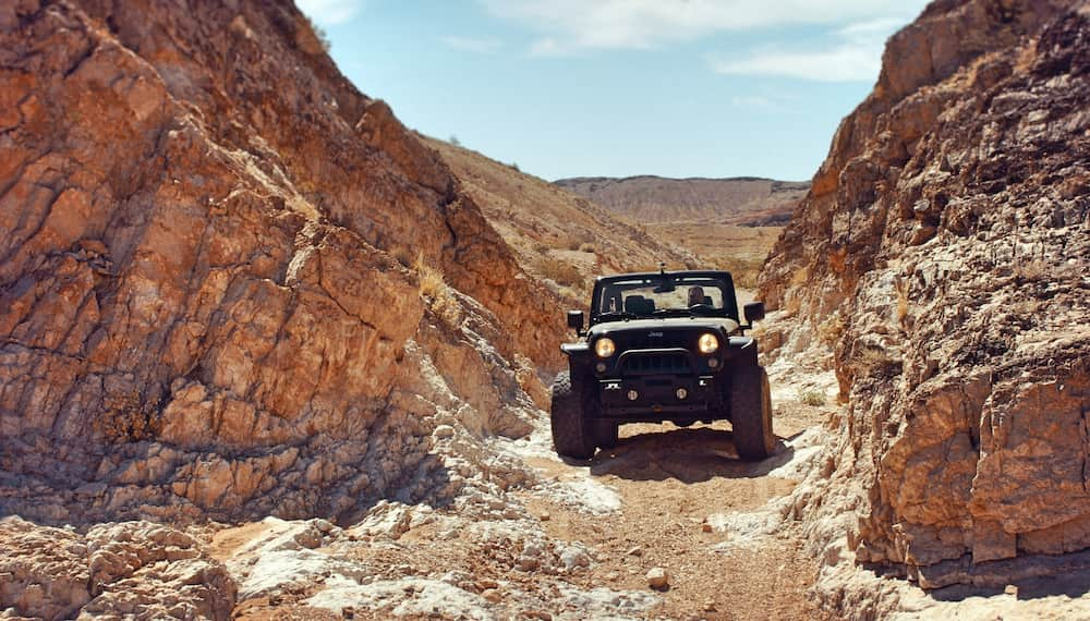 Jeep off-roading in the summer